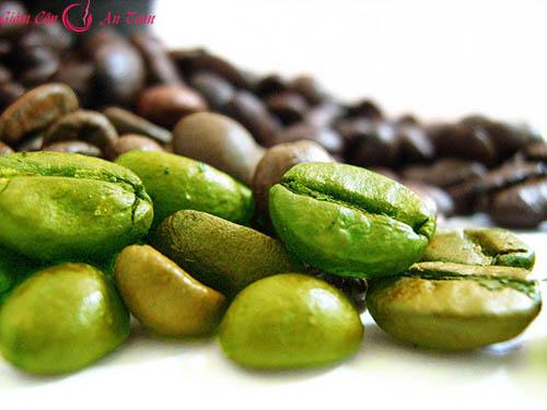 Giảm cân với cà phê xanh hiệu quả-phần 1