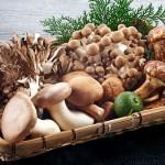 Các loại nấm giúp giảm cân ít người biết