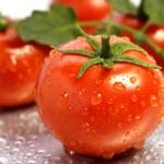 Ăn cà chua đúng cách để giảm cân hiệu quả