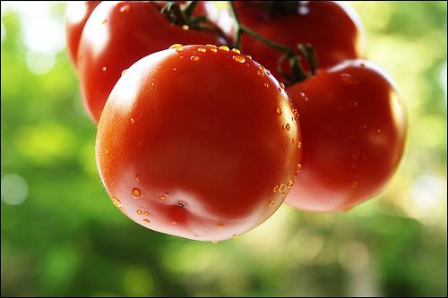 Những thực phẩm giúp ngăn chặn quá trình lão hóa da 6