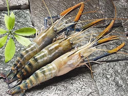 Cuối tuần thưởng thức món tôm xào rau rau củ phong cách Brazil 1