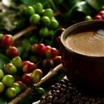 Cách giảm cân toàn diện từ cà phê