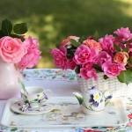 Khám phá cách giảm cân từ các loại hoa cỏ