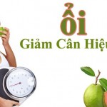 2 công thức hỗ trợ giảm béo bất ngờ từ quả ổi