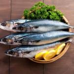 Top 9 loại động, thực vật giúp ích cho quá trình ăn kiêng giảm cân