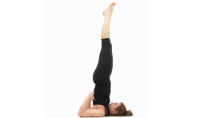 Tư vấn 4 tư thế yoga giúp người tập cải thiện vóc dáng và cải thiện vòng 14